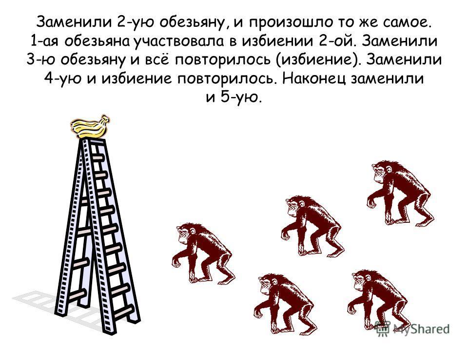 Заменили 2-ую обезьяну, и произошло то же самое. 1-ая обезьяна участвовала в избиении 2-ой. Заменили 3-ю обезьяну и всё повторилось (избиение). Заменили 4-ую и избиение повторилось. Наконец заменили и 5-ую.