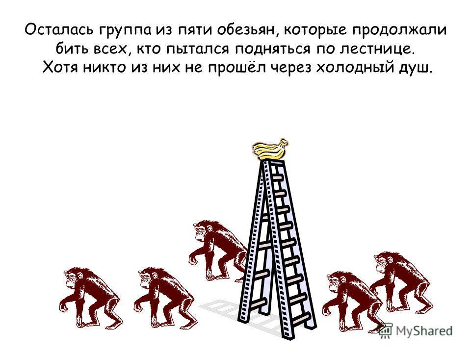 Осталась группа из пяти обезьян, которые продолжали бить всех, кто пытался подняться по лестнице. Хотя никто из них не прошёл через холодный душ.