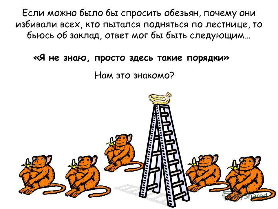 Если можно было бы спросить обезьян, почему они избивали всех, кто пытался подняться по лестнице, то бьюсь об заклад, ответ мог бы быть следующим… «Я не знаю, просто здесь такие порядки» Нам это знакомо?
