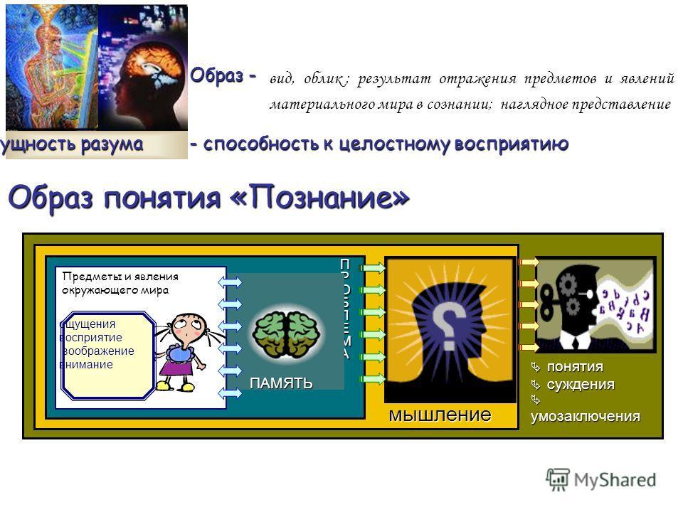 Образ понятия «Познание» понятия понятия суждения суждения умозаключения умозаключения мышление ПРОБЛЕМА ПАМЯТЬ Предметы и явления окружающего мира ощущения восприятие воображение внимание сущность разума - способность к целостному восприятию вид, об