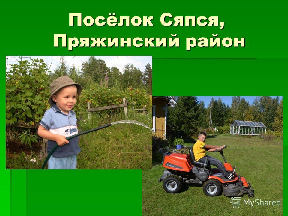 Посёлок Сяпся, Пряжинский район
