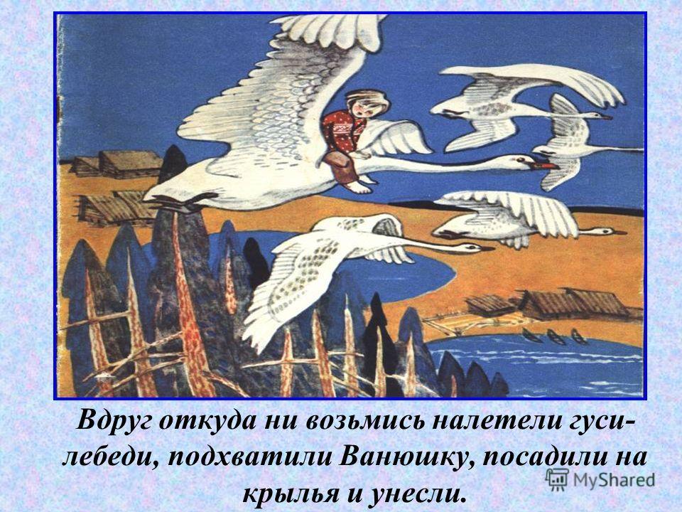 Вдруг откуда ни возьмись налетели гуси- лебеди, подхватили Ванюшку, посадили на крылья и унесли.