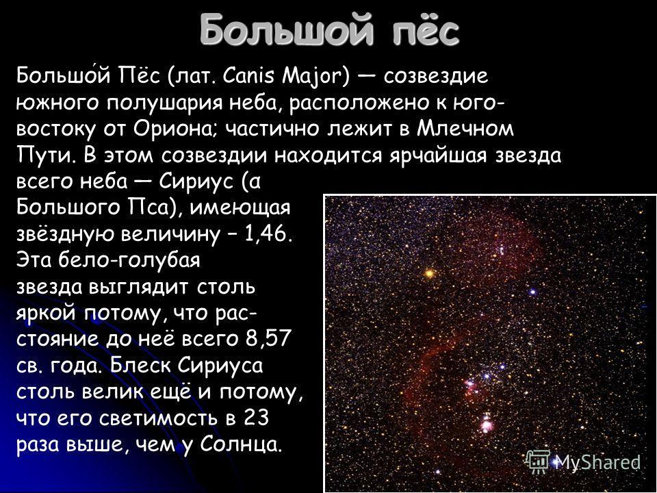 Большой пёс Большой Пёс (лат. Canis Major) созвездие южного полушария неба, расположено к юго- востоку от Ориона; частично лежит в Млечном Пути. В этом созвездии находится ярчайшая звезда всего неба Сириус (α Большого Пса), имеющая звёздную величину