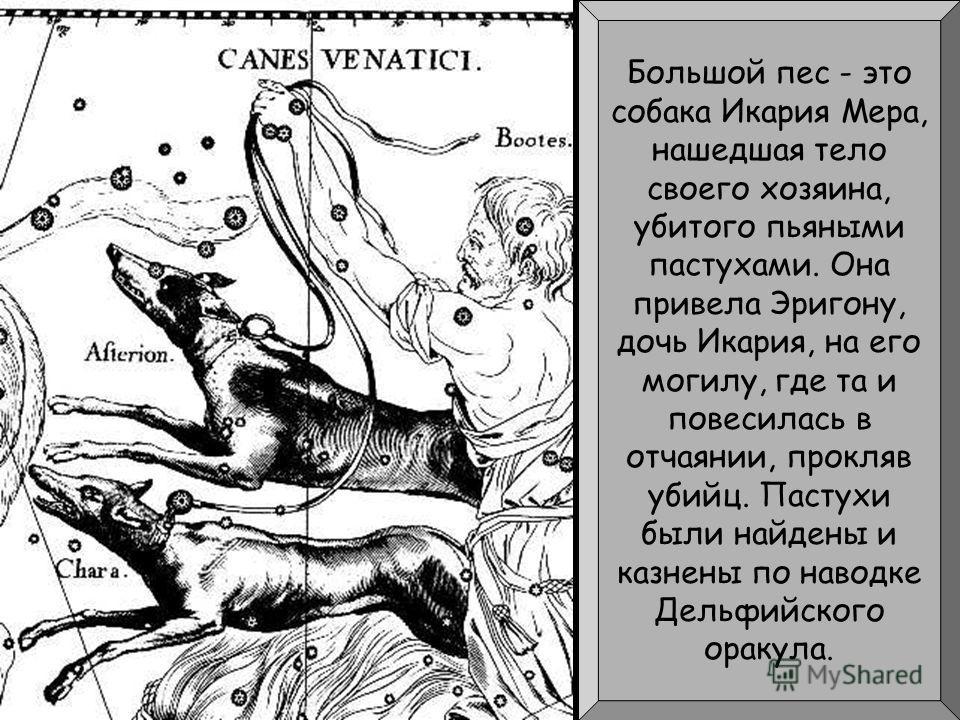 Большой пес - это собака Икария Мера, нашедшая тело своего хозяина, убитого пьяными пастухами. Она привела Эригону, дочь Икария, на его могилу, где та и повесилась в отчаянии, прокляв убийц. Пастухи были найдены и казнены по наводке Дельфийского орак
