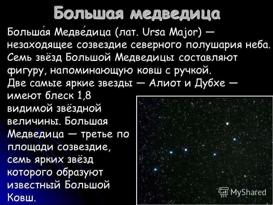 Большая медведица Большая Медведица (лат. Ursa Major) незаходящее созвездие северного полушария неба. Семь звёзд Большой Медведицы составляют фигуру, напоминающую ковш с ручкой. Две самые яркие звезды Алиот и Дубхе имеют блеск 1,8 видимой звёздной ве