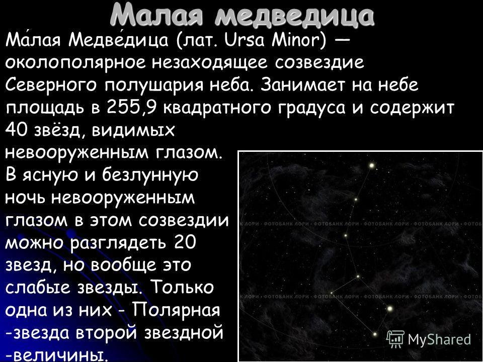 Малая медведица Малая Медведица (лат. Ursa Minor) околополярное незаходящее созвездие Северного полушария неба. Занимает на небе площадь в 255,9 квадратного градуса и содержит 40 звёзд, видимых невооруженным глазом. В ясную и безлунную ночь невооруже