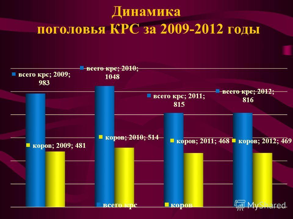 Динамика поголовья КРС за 2009-2012 годы