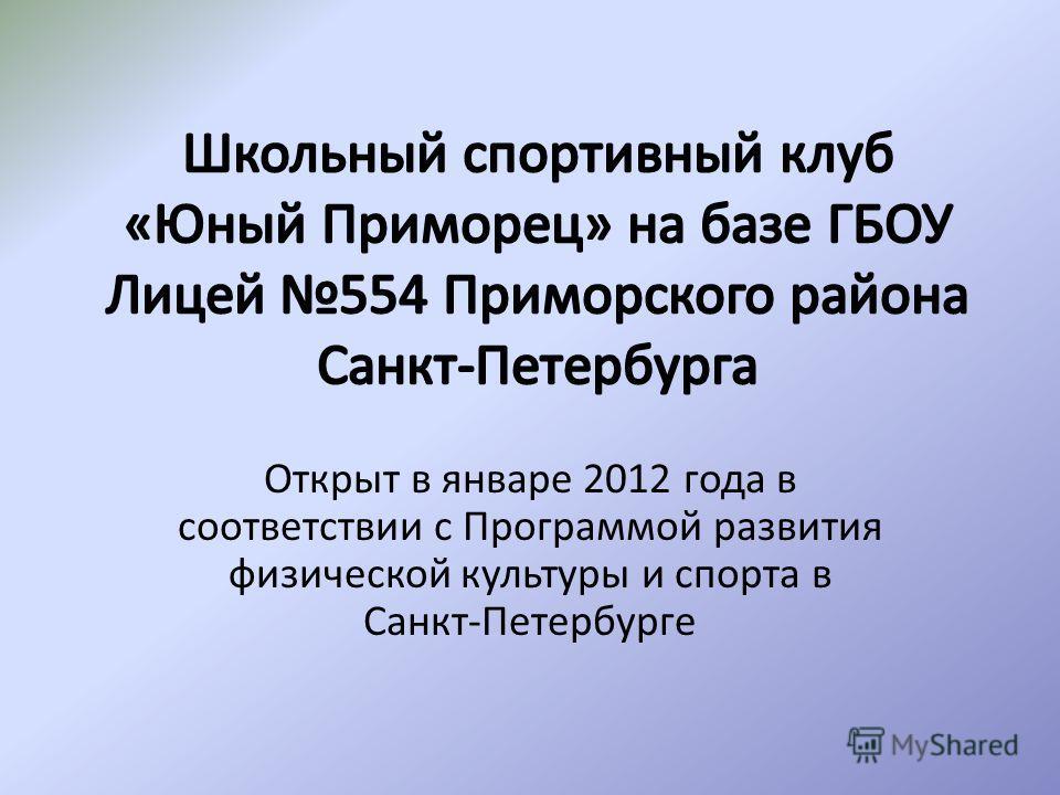 Открыт в январе 2012 года в соответствии с Программой развития физической культуры и спорта в Санкт-Петербурге