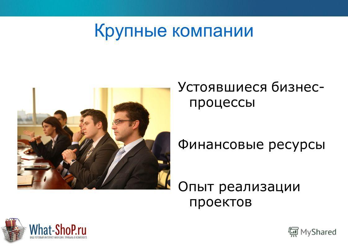 Крупные компании Устоявшиеся бизнес- процессы Финансовые ресурсы Опыт реализации проектов