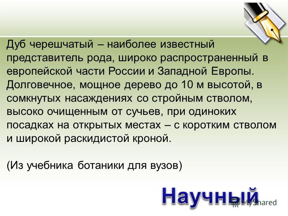 Дуб черешчатый – наиболее известный представитель рода, широко распространенный в европейской части России и Западной Европы. Долговечное, мощное дерево до 10 м высотой, в сомкнутых насаждениях со стройным стволом, высоко очищенным от сучьев, при оди