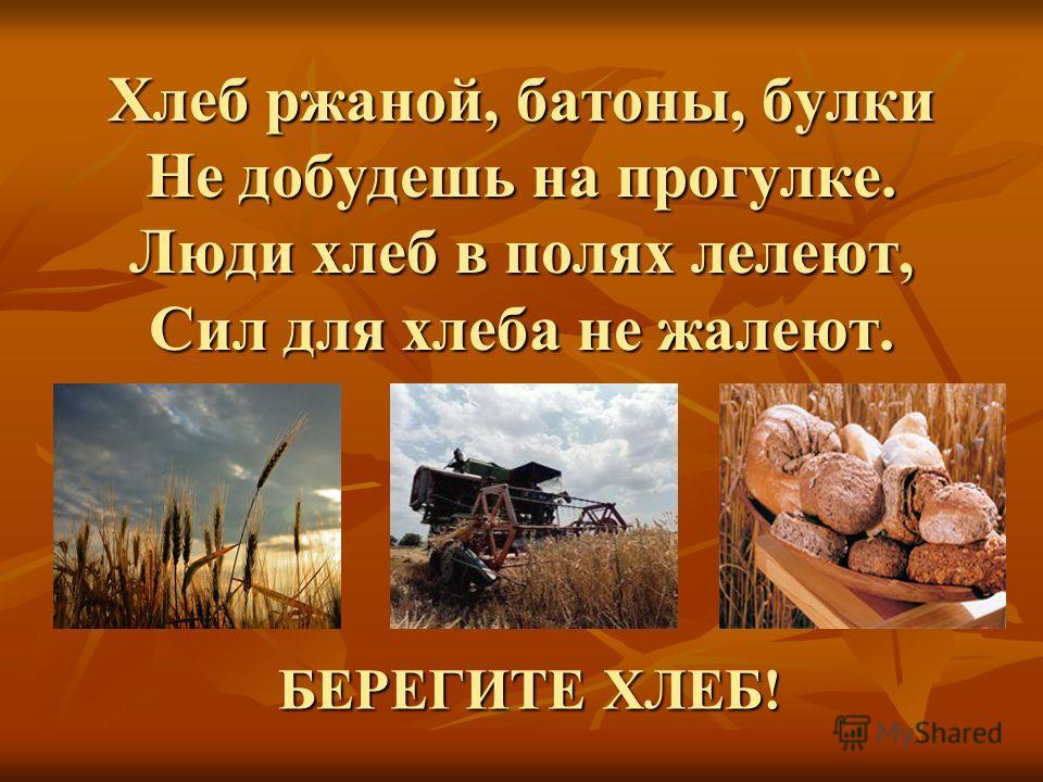 Хлеб ржаной, батоны, булки Не добудешь на прогулке. Люди хлеб в полях лелеют, Сил для хлеба не жалеют. БЕРЕГИТЕ ХЛЕБ!