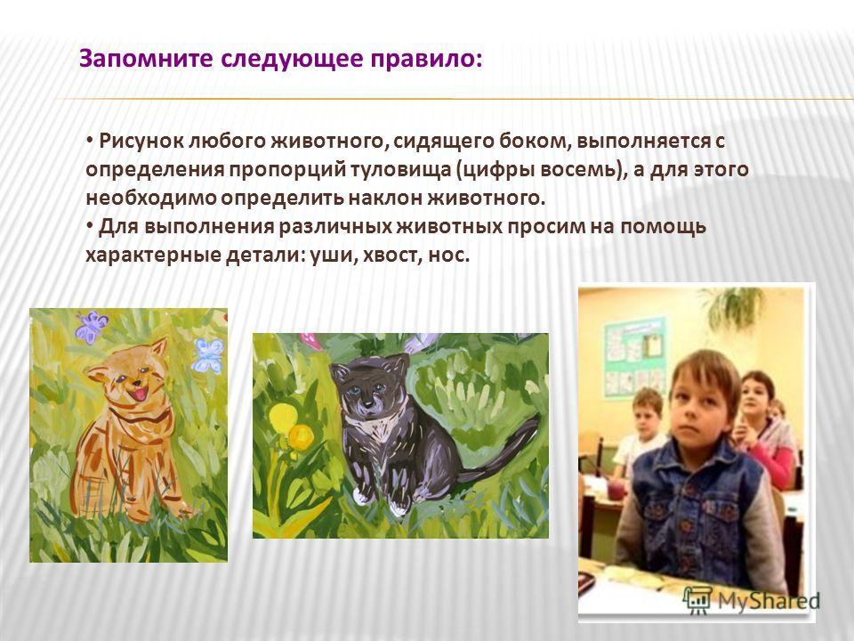 Запомните следующее правило: Рисунок любого животного, сидящего боком, выполняется с определения пропорций туловища (цифры восемь), а для этого необходимо определить наклон животного. Для выполнения различных животных просим на помощь характерные дет