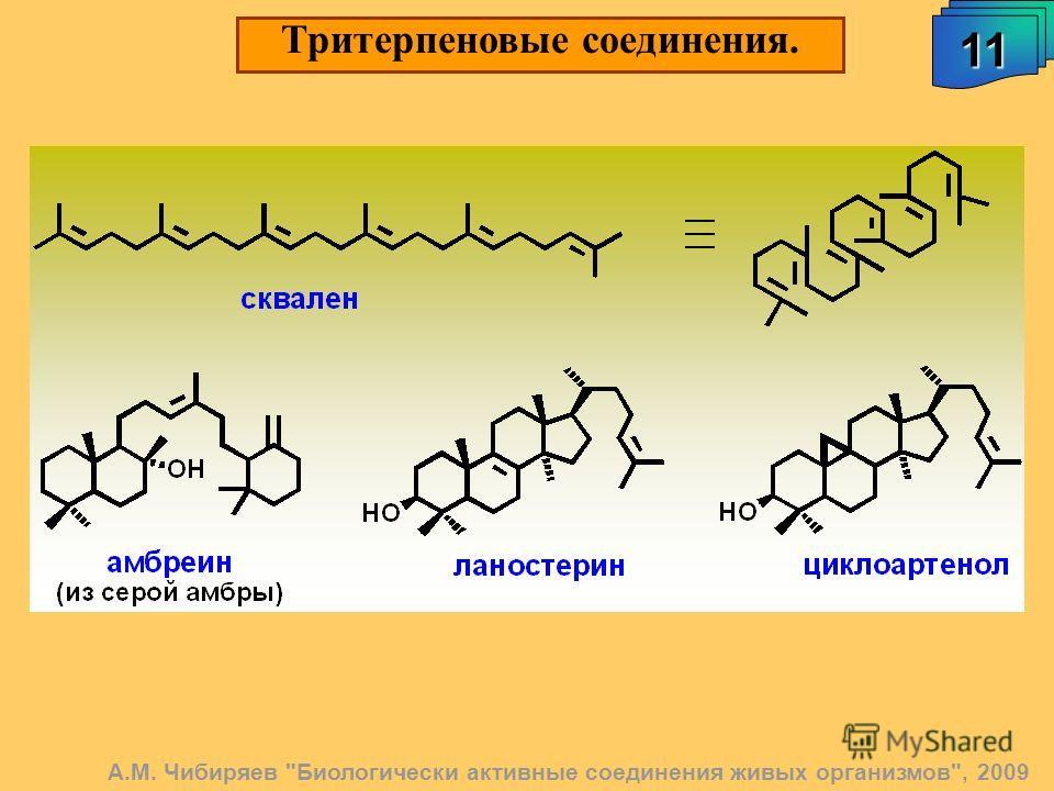 Тритерпеновые соединения. 11111111 А.М. Чибиряев Биологически активные соединения живых организмов, 2009