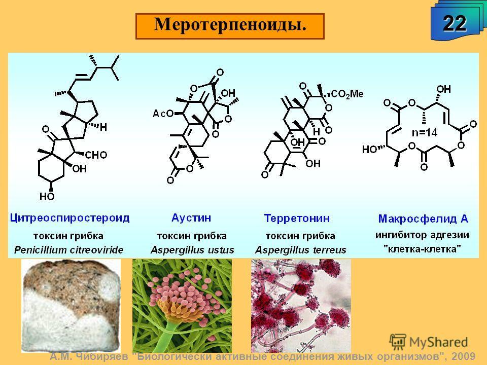 Меротерпеноиды. 22 А.М. Чибиряев Биологически активные соединения живых организмов, 2009