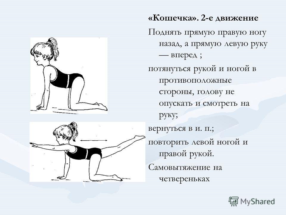 «Кошечка». 2-е движение Поднять прямую правую ногу назад, а прямую левую руку вперед ; потянуться рукой и ногой в противоположные стороны, голову не опускать и смотреть на руку; вернуться в и. п.; повторить левой ногой и правой рукой. Самовытяжение