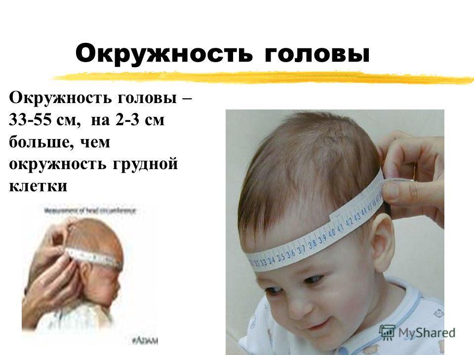 Окружность головы Окружность головы – 33-55 cм, на 2-3 cм больше, чем окружность грудной клетки