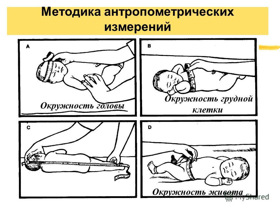Методика антропометрических измерений Окружность головы Окружность грудной клетки Окружность живота