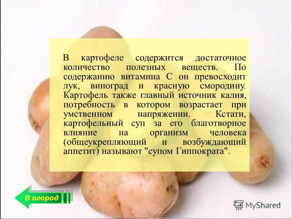 морковь от холестерина