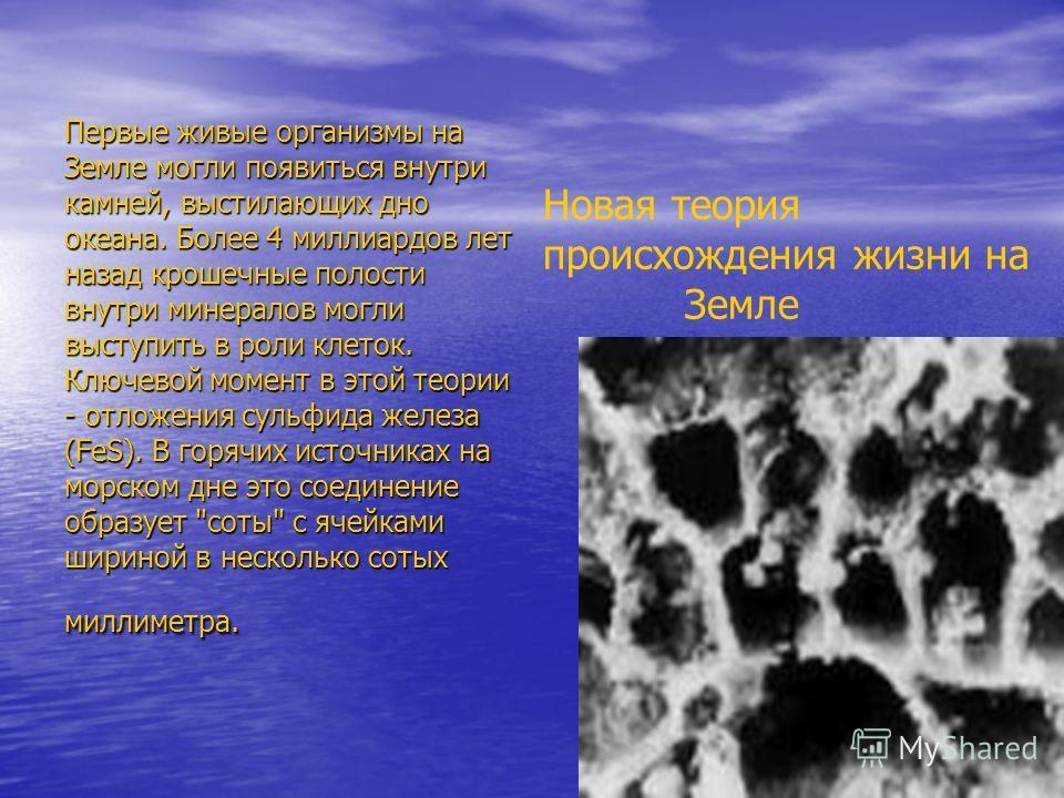 Первые живые организмы на Земле могли появиться внутри камней, выстилающих дно океана. Более 4 миллиардов лет назад крошечные полости внутри минералов могли выступить в роли клеток. Ключевой момент в этой теории - отложения сульфида железа (FeS). В г