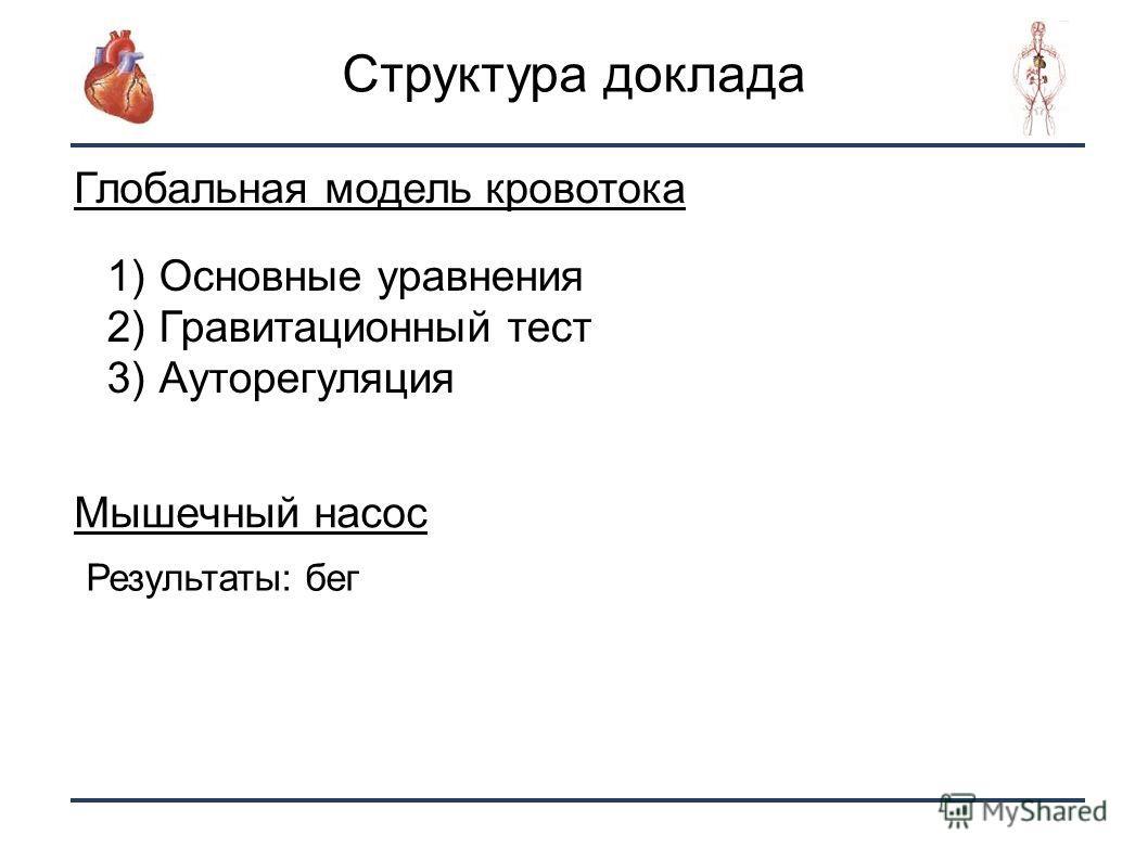 2 Структура доклада Глобальная модель кровотока 1) Основные уравнения 2) Гравитационный тест 3) Ауторегуляция Мышечный насос Результаты: бег
