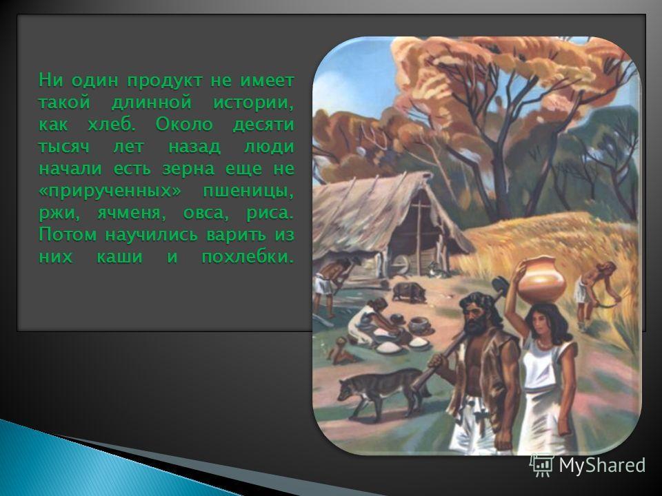 Ни один продукт не имеет такой длинной истории, как хлеб. Около десяти тысяч лет назад люди начали есть зерна еще не «прирученных» пшеницы, ржи, ячменя, овса, риса. Потом научились варить из них каши и похлебки.