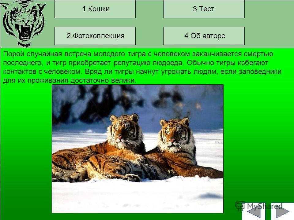1.Кошки3.Тест Порой случайная встреча молодого тигра с человеком заканчивается смертью последнего, и тигр приобретает репутацию людоеда. Обычно тигры избегают контактов с человеком. Вряд ли тигры начнут угрожать людям, если заповедники для их прожива