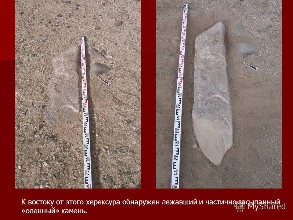 К востоку от этого херексура обнаружен лежавший и частично засыпанный «оленный» камень.