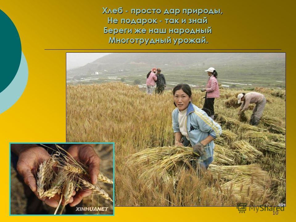 Хлеб - просто дар природы, Не подарок - так и знай Береги же наш народный Многотрудный урожай. 10