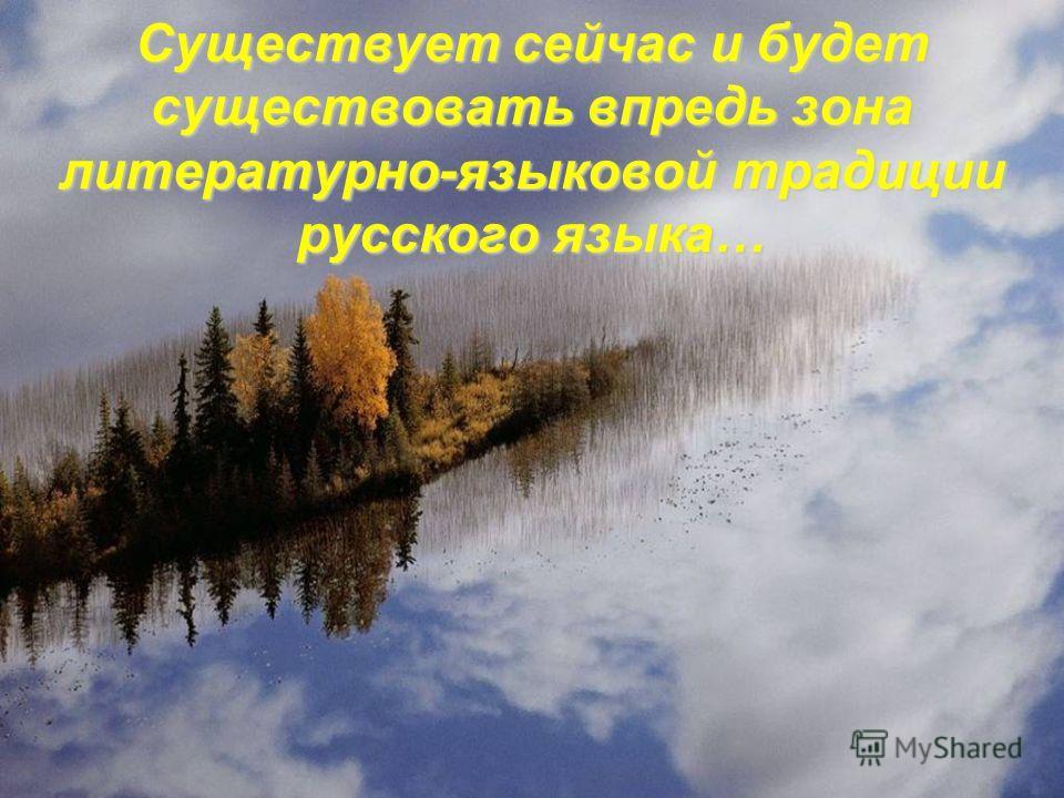 Существует сейчас и будет существовать впредь зона литературно-языковой традиции русского языка…