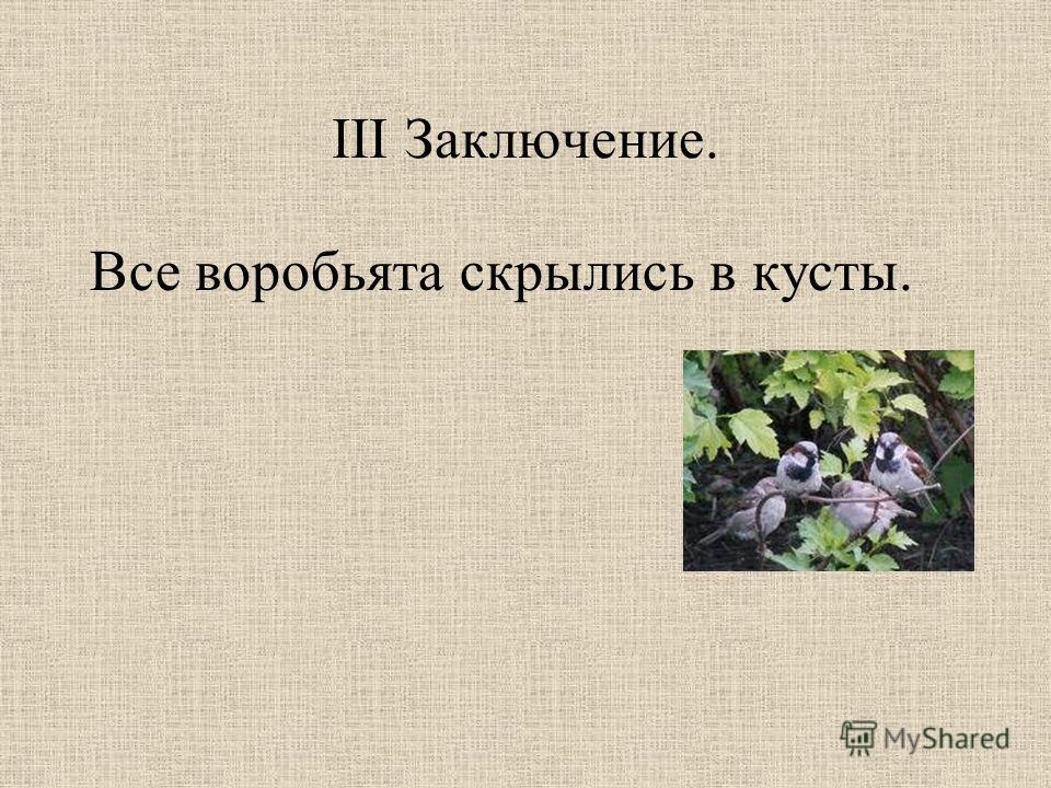 III Заключение. Все воробьята скрылись в кусты.