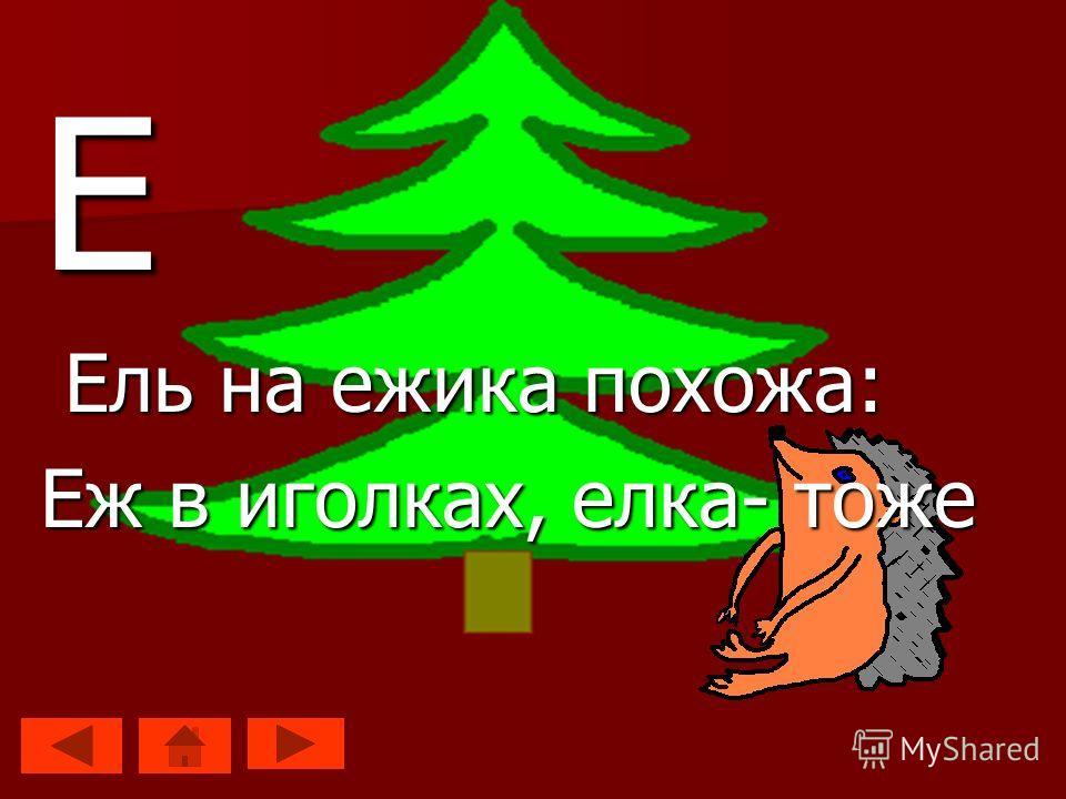 Е Ель на ежика похожа: Ель на ежика похожа: Еж в иголках, елка- тоже