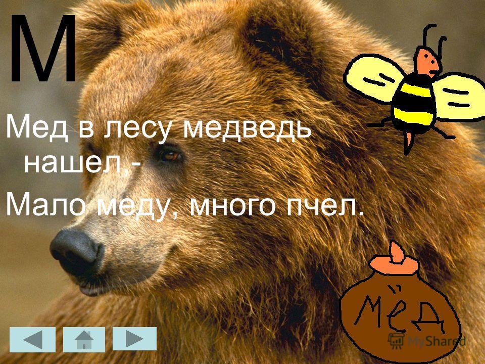 М Мед в лесу медведь нашел,- Мало меду, много пчел.