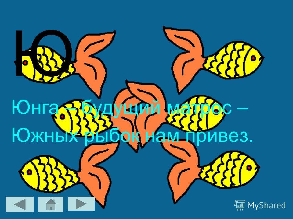 Ю Юнга – будущий матрос – Южных рыбок нам привез.