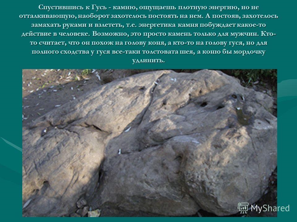 Спустившись к Гусь - камню, ощущаешь плотную энергию, но не отталкивающую, наоборот захотелось постоять на нем. А постояв, захотелось замахать руками и взлететь, т.е. энергетика камня побуждает какое-то действие в человеке. Возможно, это просто камен