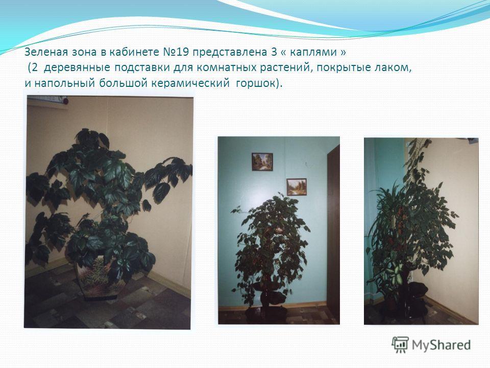Зеленая зона в кабинете 19 представлена 3 « каплями » (2 деревянные подставки для комнатных растений, покрытые лаком, и напольный большой керамический горшок).