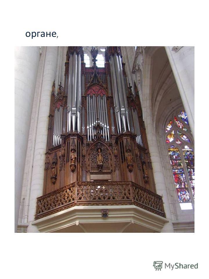 органе,