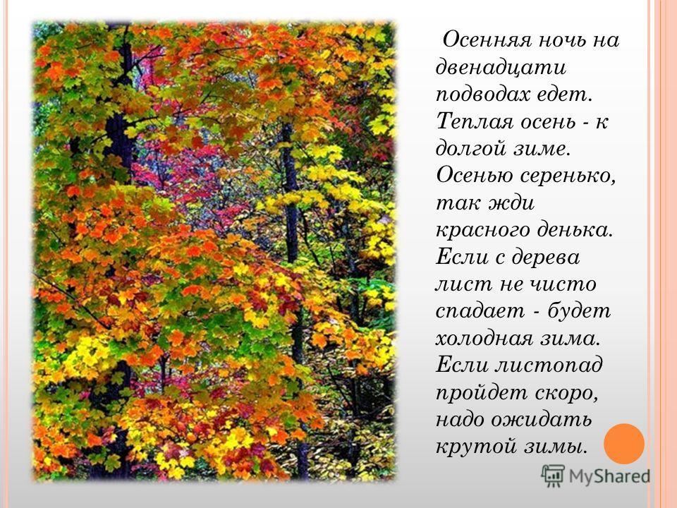 Осенняя ночь на двенадцати подводах едет. Теплая осень - к долгой зиме. Осенью серенько, так жди красного денька. Если с дерева лист не чисто спадает - будет холодная зима. Если листопад пройдет скоро, надо ожидать крутой зимы.