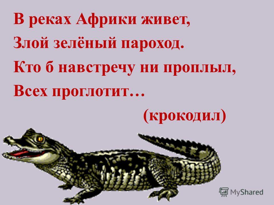 В реках Африки живет, Злой зелёный пароход. Кто б навстречу ни проплыл, Всех проглотит… (крокодил)