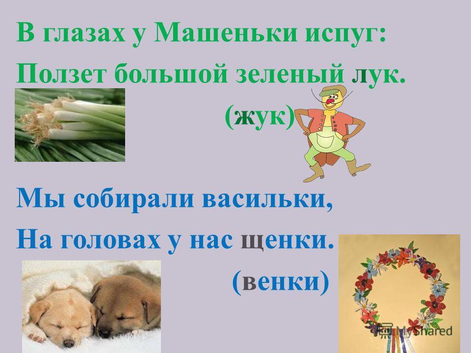 В глазах у Машеньки испуг: Ползет большой зеленый лук. (жук) Мы собирали васильки, На головах у нас щенки. (венки)