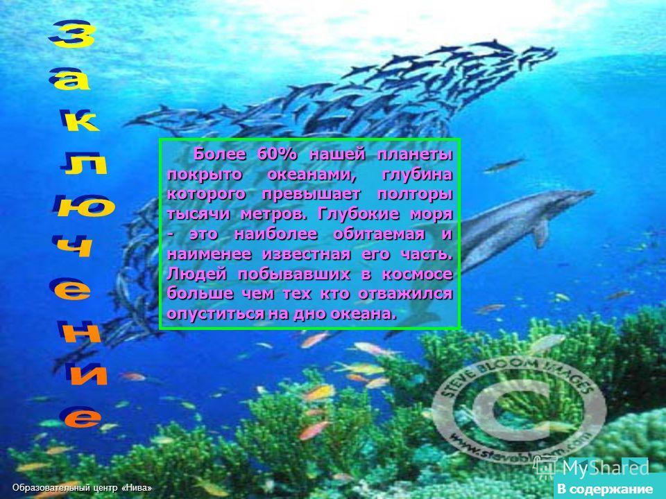 Образовательный центр «Нива» В содержание Более 60% нашей планеты покрыто океанами, глубина которого превышает полторы тысячи метров. Глубокие моря - это наиболее обитаемая и наименее известная его часть. Людей побывавших в космосе больше чем тех кто