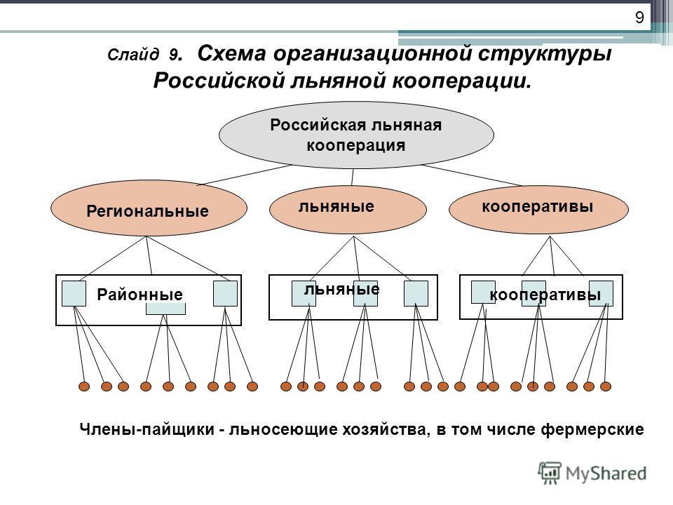 Слайд 9. Схема организационной структуры Российской льняной кооперации. Региональные Члены-пайщики - льносеющие хозяйства, в том числе фермерские льняныекооперативы Российская льняная кооперация 9 кооперативы льняные Районные