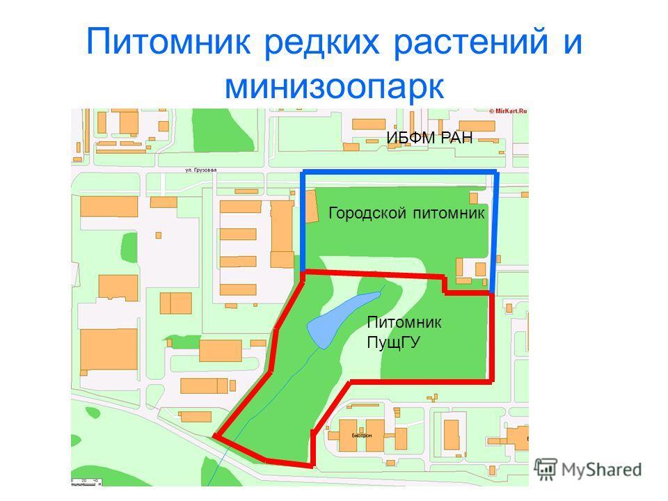Питомник редких растений и минизоопарк Городской питомник Питомник ПущГУ ИБФМ РАН