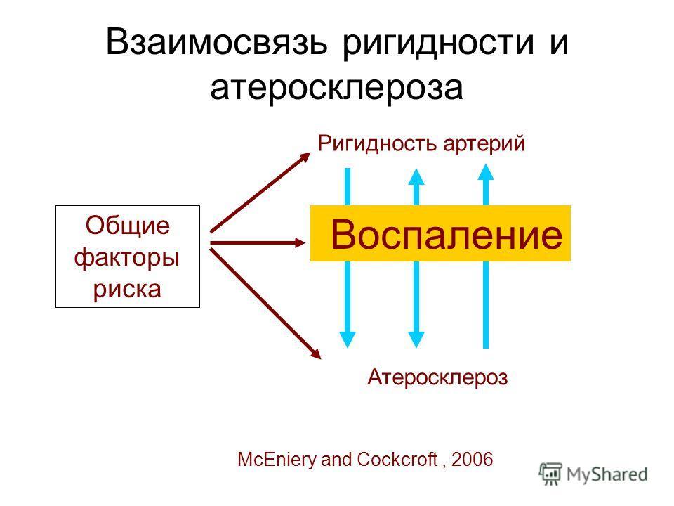Взаимосвязь ригидности и атеросклероза Общие факторы риска Ригидность артерий Атеросклероз Воспаление McEniery and Cockcroft, 2006
