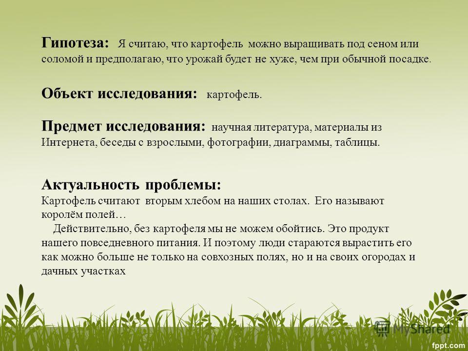 Гипотеза: Я считаю, что картофель можно выращивать под сеном или соломой и предполагаю, что урожай будет не хуже, чем при обычной посадке. Объект исследования: картофель. Предмет исследования: научная литература, материалы из Интернета, беседы с взро