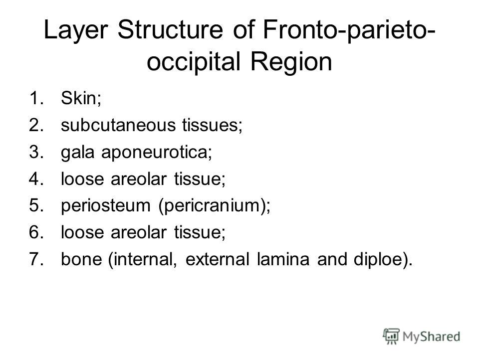 Layer Structure of Fronto-parieto- occipital Region 1.Skin; 2.subcutaneous tissues; 3.gala aponeurotica; 4.loose areolar tissue; 5.periosteum (pericranium); 6.loose areolar tissue; 7.bone (internal, external lamina and diploe).