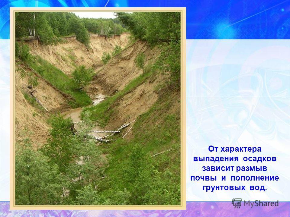 От характера выпадения осадков зависит размыв почвы и пополнение грунтовых вод.