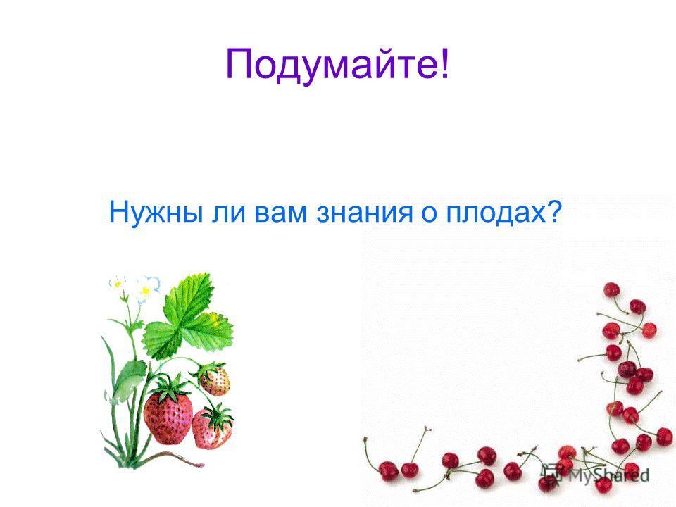 Подумайте! Нужны ли вам знания о плодах?