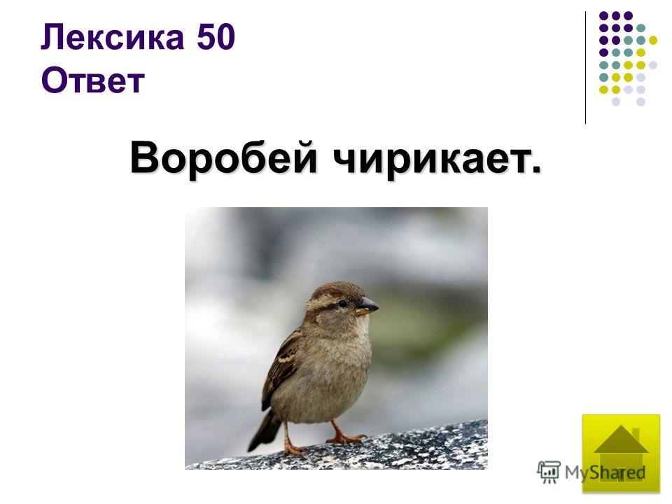 Лексика 50 Ответ Воробей чирикает.