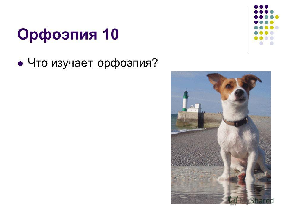 Орфоэпия 10 Что изучает орфоэпия?