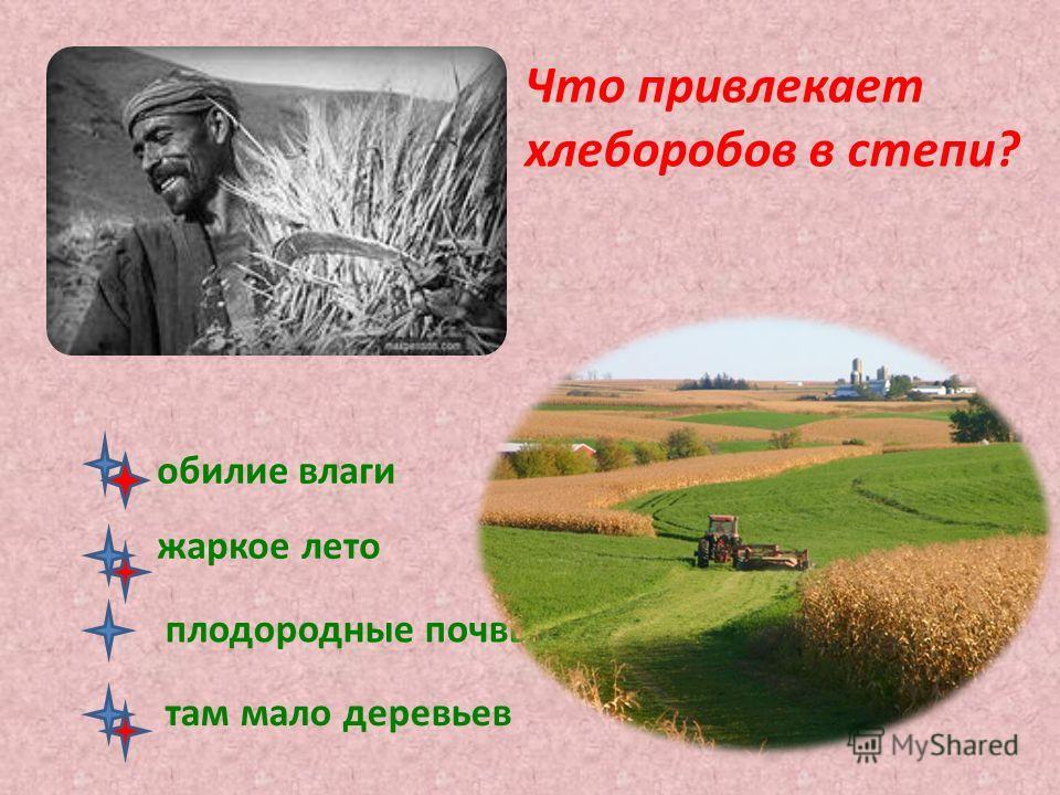 Что привлекает хлеборобов в степи? обилие влаги жаркое лето плодородные почвы там мало деревьев